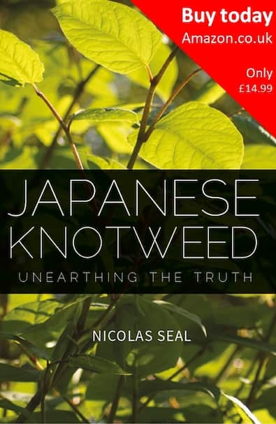 Japanese Knotweed Unearthing the Truth
