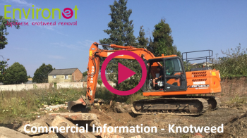 Commercial Information Japanese Knotweed Video