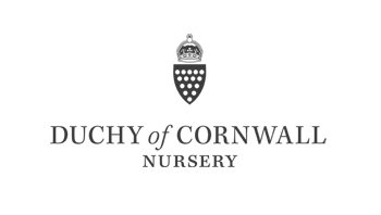 Duchy of Cornwall Nursery