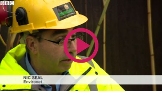 BBC knotweed information video with Nic