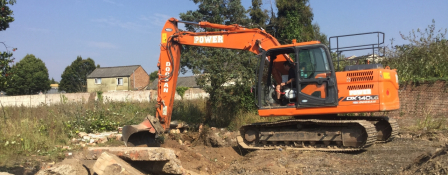 Japanese knotweed clearance construction sites