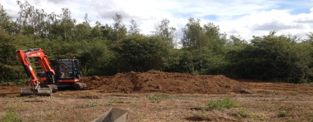 RemovingJapanese knotweed from a construction site