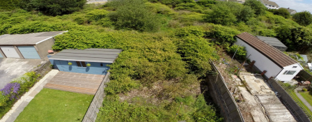 Japanese knotweed encroachment and neighbours